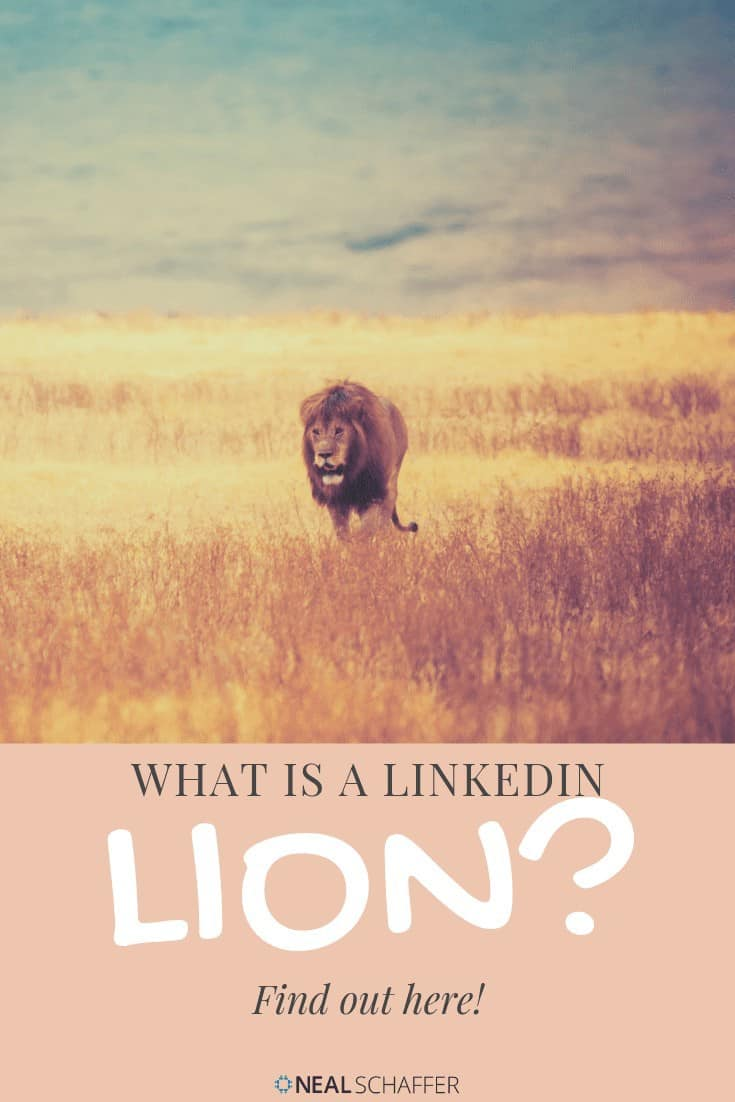 Definition of what a LinkedIn LION means looking at the movement's history. Includes analysis of open networker etiquette and how they are viewed by others.