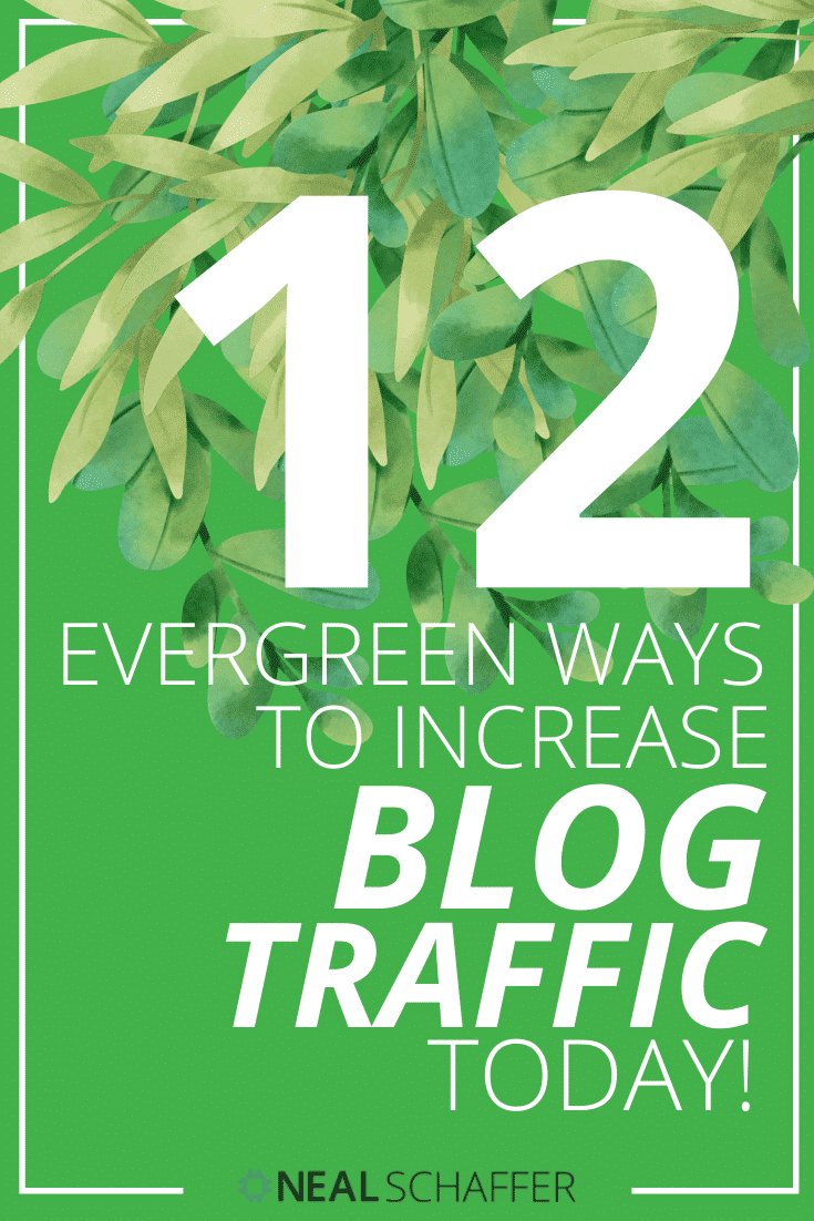 Do you want to increase blog traffic? Here's 12 evergreen ways to increase your website traffic and build your business. If you take action you WILL succeed