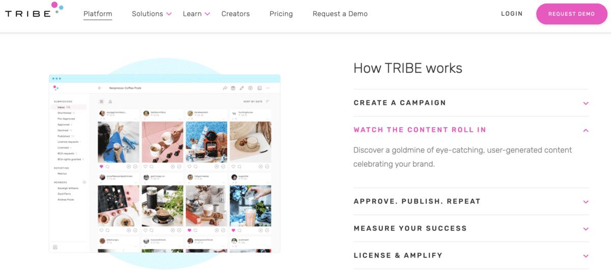 TRIBE influencer marketplace