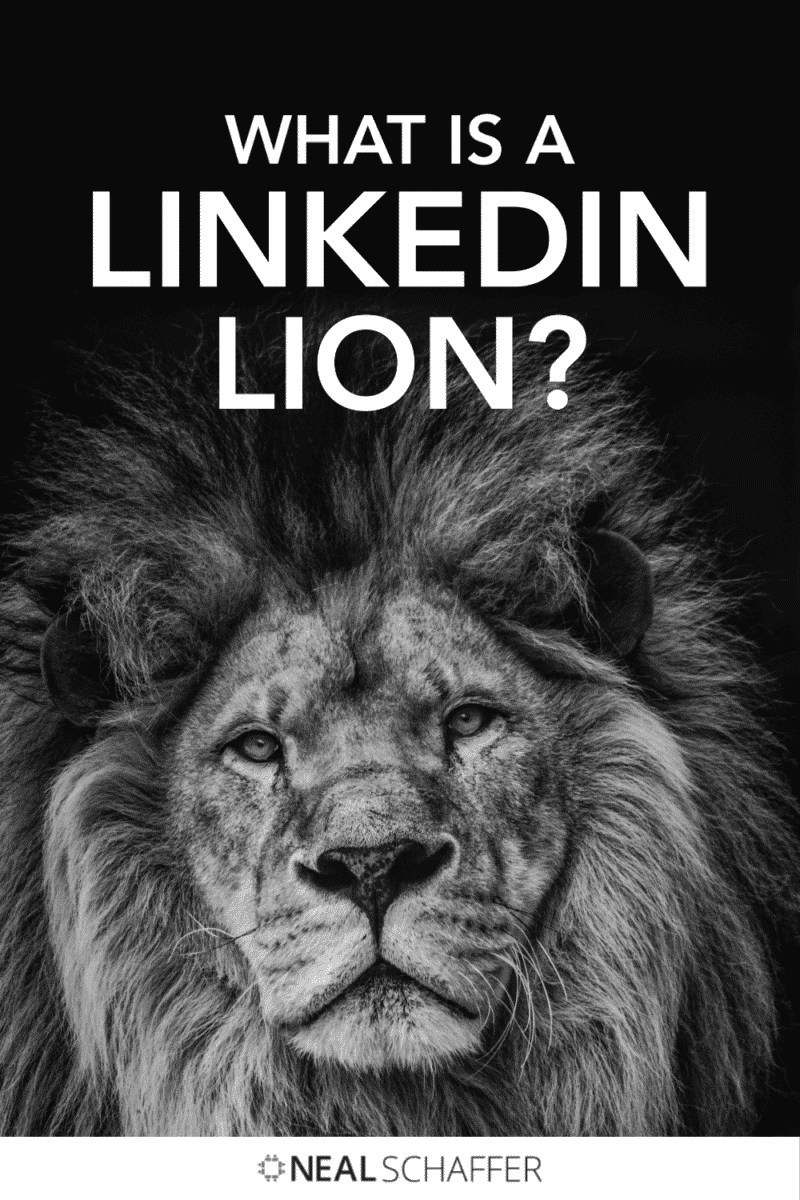 What the heck is a LinkedIn LION? Learn all about who LinkedIn Open Networkers are, analysis of open networker etiquette, and how they are ...