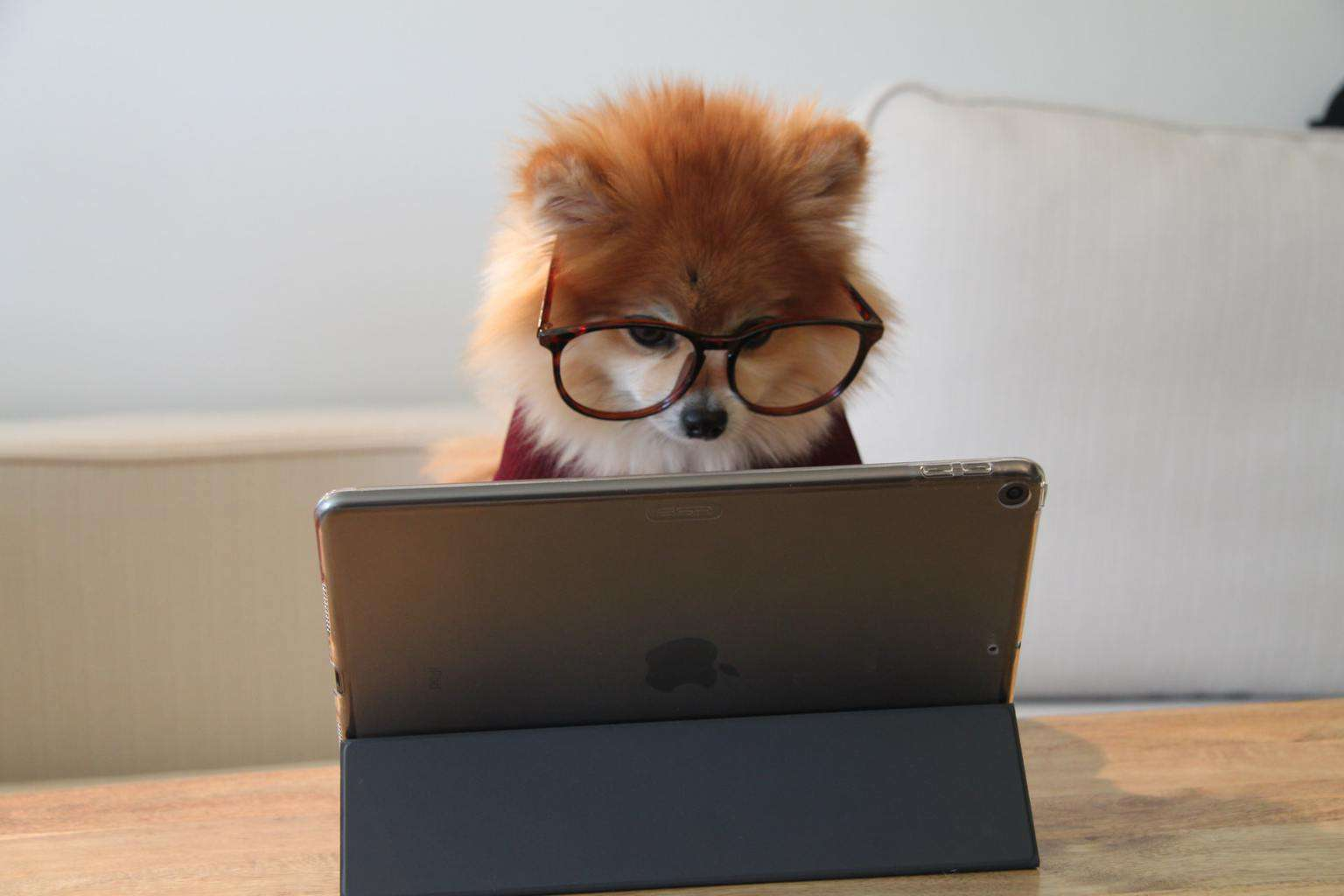Why Blog on Medium? Should I Republish My Blog Content onto Medium?